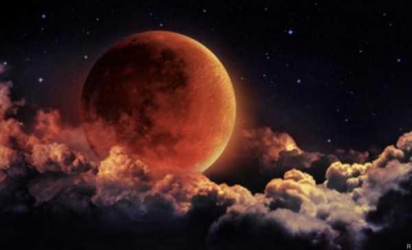 Петербуржцы смогут увидеть комету илунное затмение вконце рабочей недели