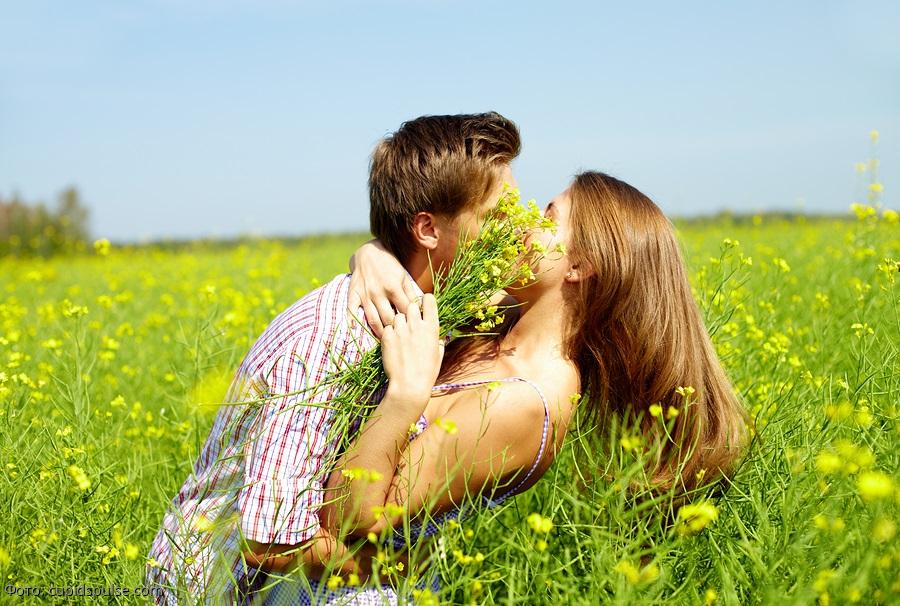 Наелась картинки, открытки любовь в поле