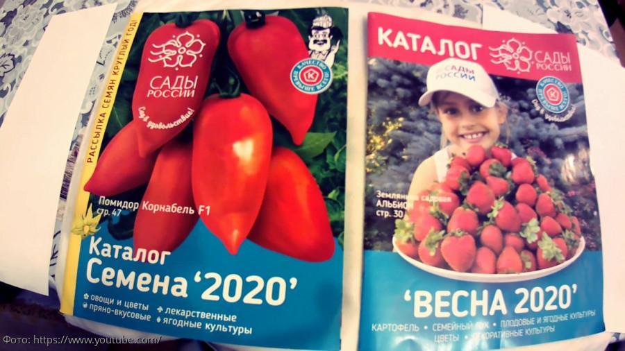 интернет магазин по продаже семян цветов
